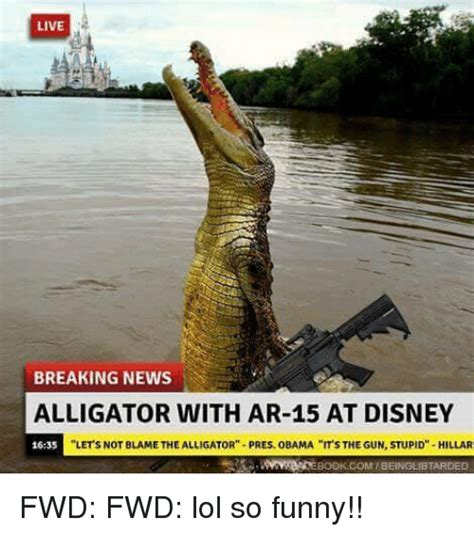 Alligator Meme - live breaking news alligator with ar 15 at disney 1635 let
