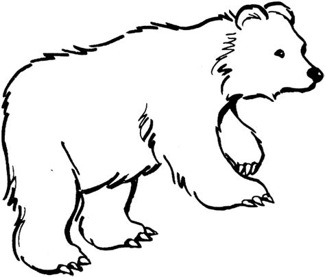 Free Outline Pictures Of Animals For Colouring Download Free Clip Art Free Clip Art On Clipart Outline Pictures Of Animals For Colouring