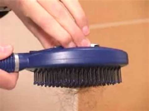 Cleaning Hair From by Self Cleaning Hair Brush Developed By Q Brush