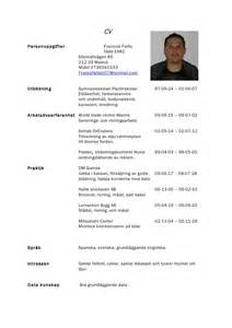 Curriculum Vitae Examples by Francois Cv