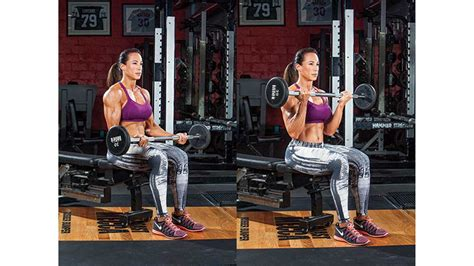 seated barbell curl armed ready fitness