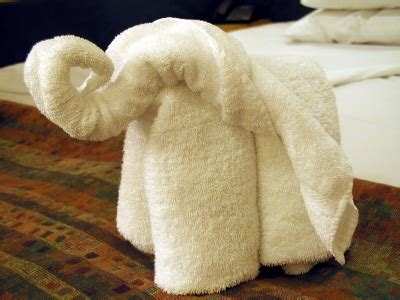 towel origami towel animals creative towel folding