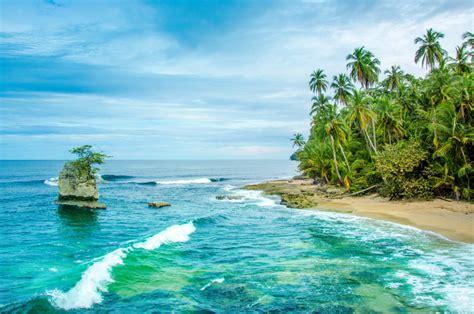 puerto viejo reggae  pura vida na costa rica qual viagem