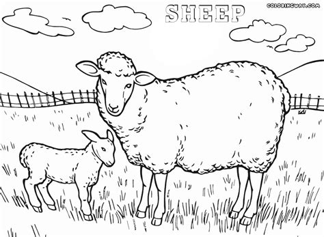 Meadow Pages Coloring Pages Meadow Coloring Page