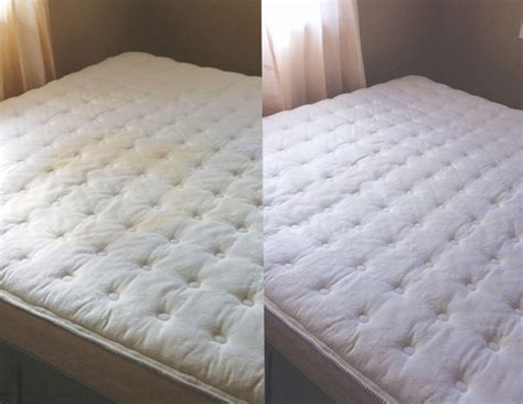 Dried Urine On Mattress by How To Remove Urine Stains Out Of Mattress