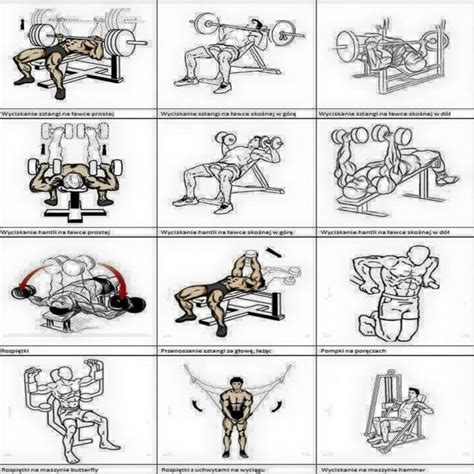 the 15 best chest exercises 19 best working out images on pinterest healthy living