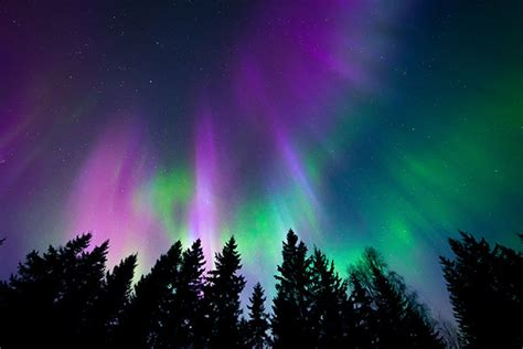 finland in december northern lights 6 reasons to spend this winter in lapland finland go