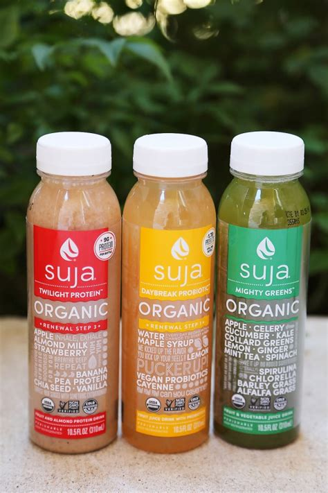 Suja One Day Detox by 1 Day Renewal Suja Juice Cleanse 15 Tips For Healthy Living