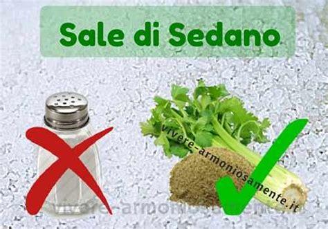 come utilizzare le foglie sedano il sedano e il sale di sedano