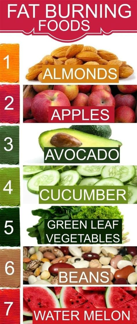 Detox Diet Foods To Avoid by 25 Best Ideas About Best Weight Loss Foods On