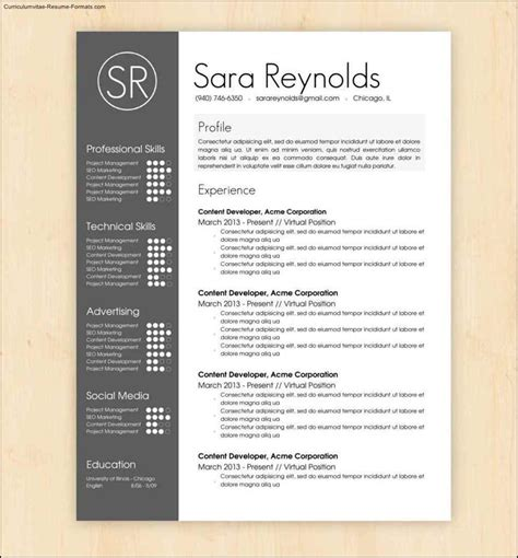templates for cool resumes cool resumes templates free sles exles format
