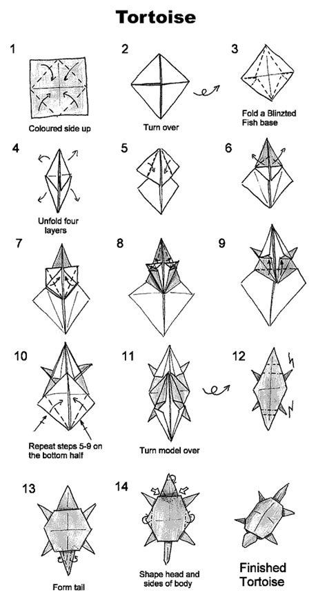 Origami Turtle Diagram - how to fold an origami tortoise i probably a dozen