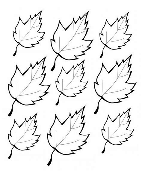 printable leaves and trees printable leaves printables pinterest
