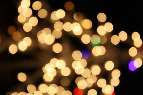 blurred christmas lights white picture free photograph