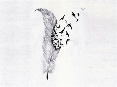 feather with birds flying out tattoo free designs feather and birds flock wallpaper 1280x960