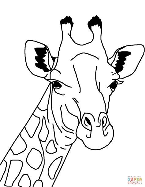 template of giraffe giraffe coloring page free printable coloring pages