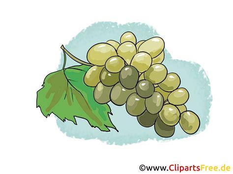 clip kostenfrei trauben illustration bild clipart kostenlos