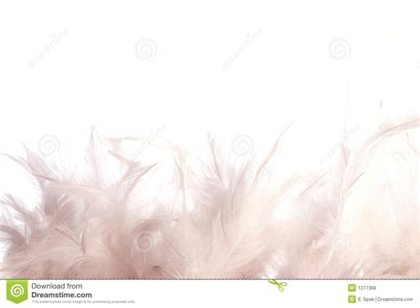 preteen girl with white feathers stock image image of white feathers royalty free stock photos image 1277368