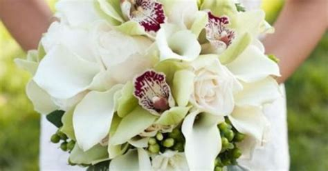 Orchid Arrangement Jadore White With Mini White Orchids Cymbidium Orchids White Mini Calla Lilies And White Roses