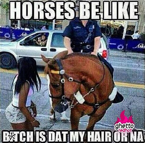 Gay Horse Meme - ghetto red hot ghetto pictures ratchet videos and funny