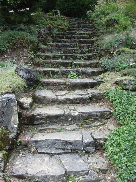 Treppe Bauen Garten by File Bielefeld Botanischer Garten Treppe Jpg Wikimedia Commons