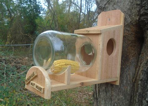 Squirrel Glass Feeder squirrel feeder rustic cedar with glass jar