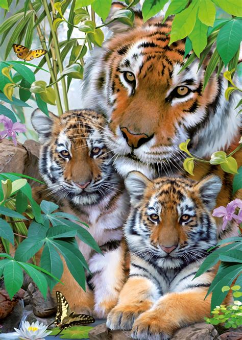 the big with happy animals the most and interesting book about animals we invite you to enjoy this fascinating story of animals who are time at the great animal in the forest books puzzle famille tigre ravensburger 19117 1000 pi 232 ces