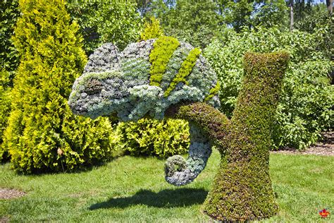 amazing plant sculptures at the montreal mosaiculture
