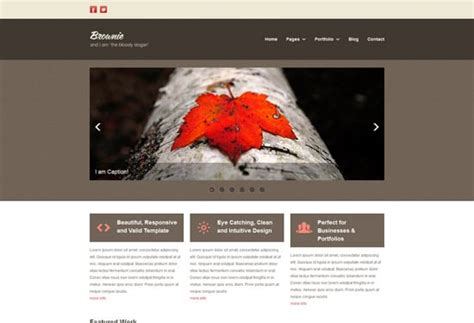 genesis brownie points 40 well designed free html5 and css3 templates