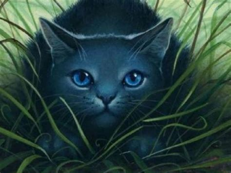 warrior cats my top collection warrior cats wallpapers