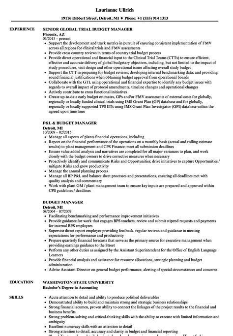 Budget Manager Resume by Budget Manager Resume Sles Velvet