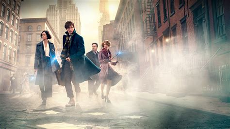 where to find wallpaper fantastic beasts and where to find them hd papel de