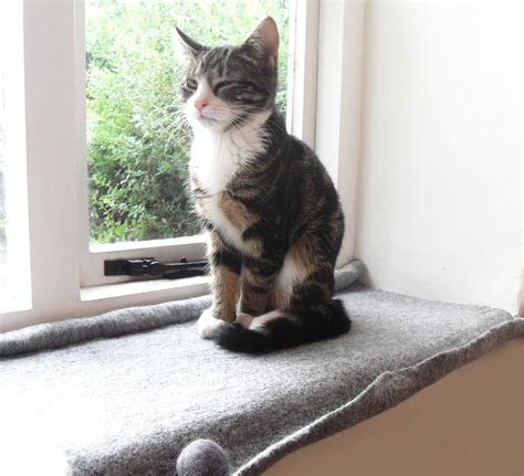 Cat Windowsill cat mat bed for windowsill by lovecatcaves notonthehighstreet