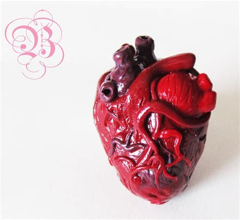 imagenes reales corazon humano corazon real humano www imgkid com the image kid has it