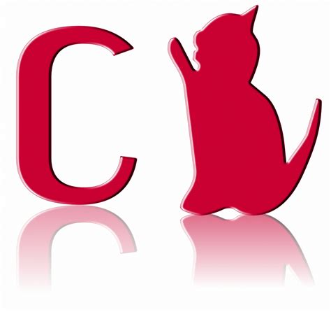 letter c of cat free stock photo domain pictures