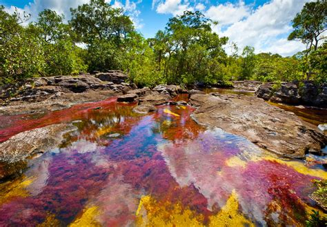 river colors ca 241 o cristales river of 5 colors my best place around