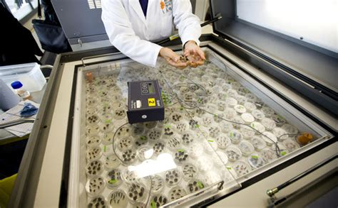 seed bank conserving biodiversity