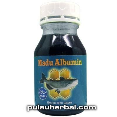 Procena Ekstrak Ikan Gabus Kutuk Asli Berkualitas madu albumin ekstrak minyak ikan gabus madu albumin jual beli obat herbal