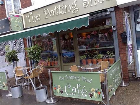 The Potting Shed by Potting Shed Chanterland Avenue Hull Photo De The