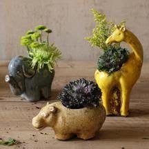 animal pots vases planters flower pots on planters