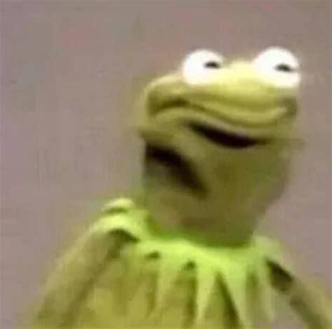 Kermit Meme My Face When - kermit disapproves dank memes and reactions pinterest