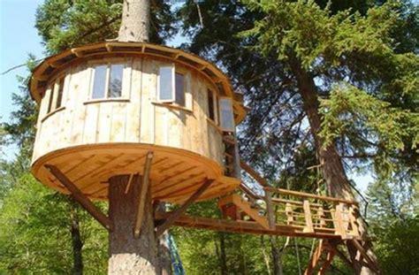 adult tree house plans inspirational how to build a tree decora 231 227 o e projetos projetos de casa na 193 rvore