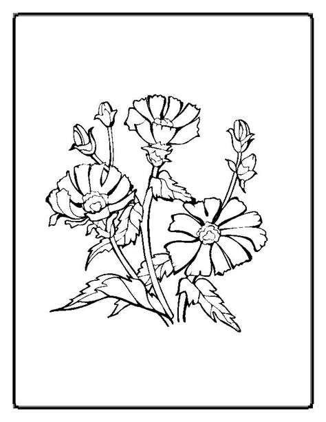coloring pages of little flowers free coloring pages of little flower