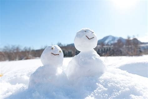 picture of snow enjoy winter to the fullest in japan and play in the snow