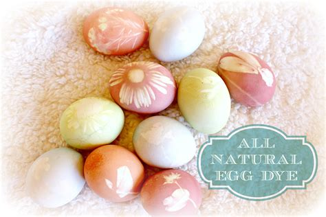 all natural flower food all natural easter egg dye using fresh flowers and