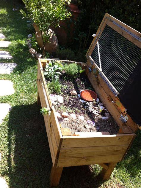 casa per tartarughe terrario all aperto per baby con casa per tartarughe di