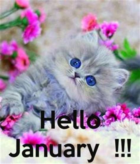 january images  january months   year january