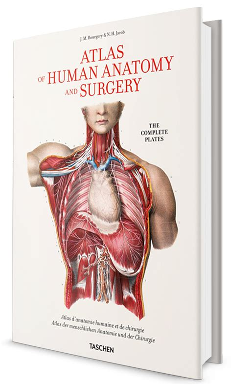 libro bourgery atlas of human bourgery atlas of human anatomy and surgery xl edition archidemia