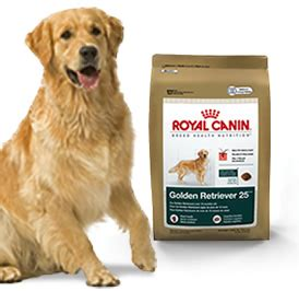 food golden retriever royal canin golden retriever 25 food 5 5 lb bag