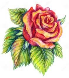 best 25 beautiful flower drawings ideas on pinterest
